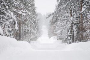 Svezia-Au-Pair-